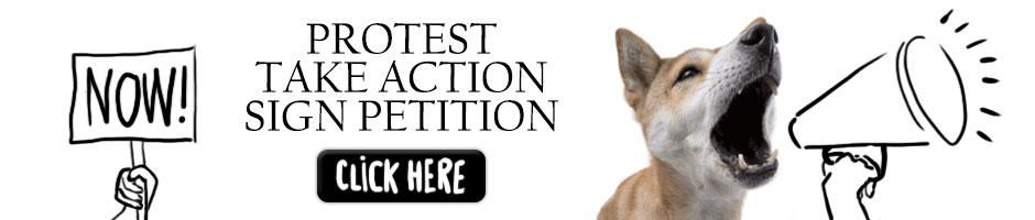 petition_ps_orizontal