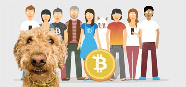 Bitcoins pictures of dogs pari mutuel betting rules on blackjack