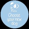 buton_choose