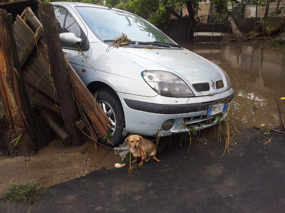Floods 2016 October